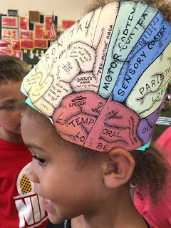 Studying how our brain learns and adding information to our science journals…www.TheSecretStories.com