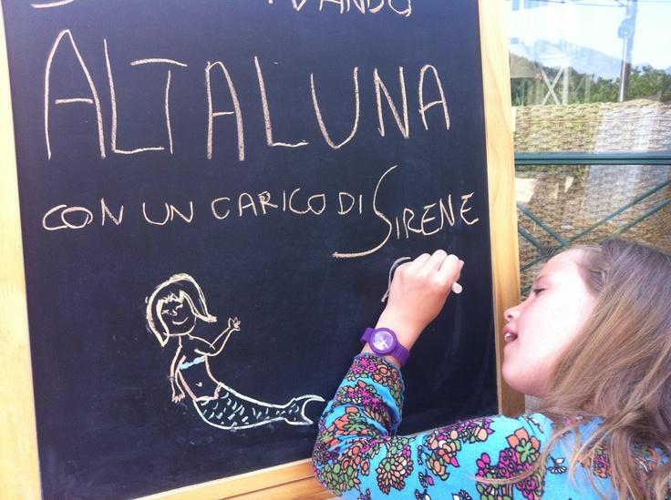 Alta Luna exposes in our restaurant
