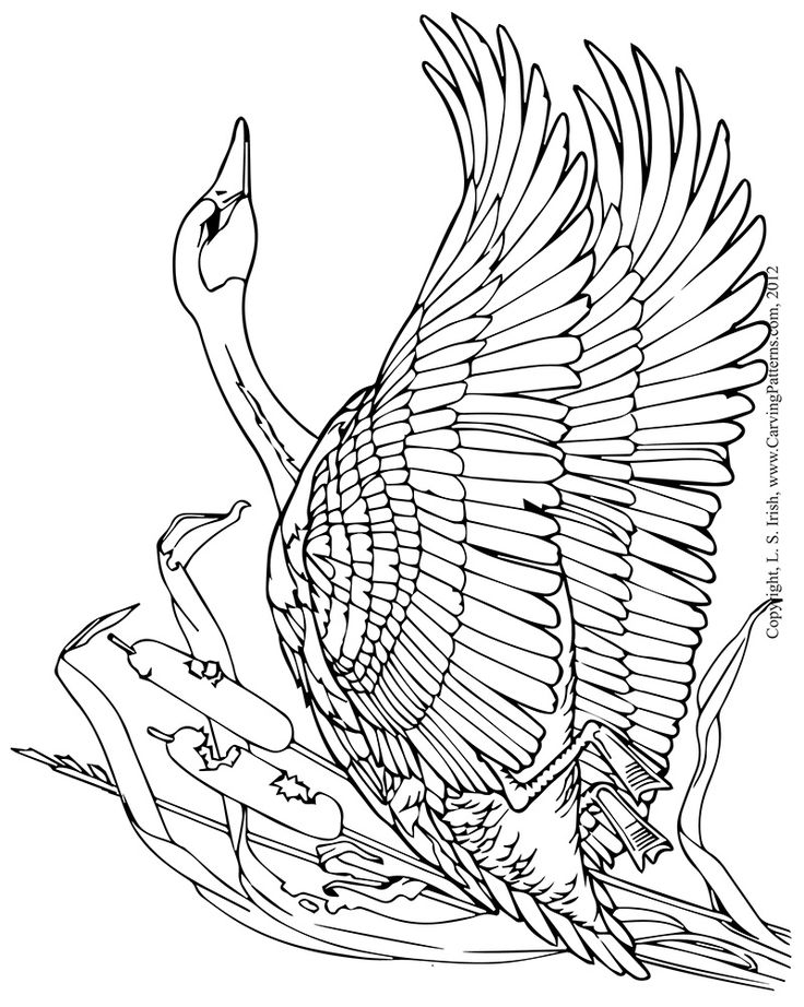 Eagle Wood Carving Pattern