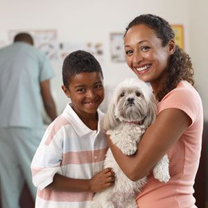 Selecting Pet Health Insurance -- PetPlan has been a lifesaver for us!