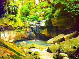 Canarvon Gorge....... looks like a great place for a camping trip.