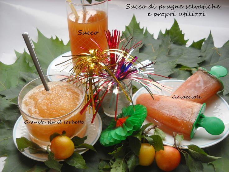 Succo di prugna selvatica Sono sincera...se avete altri modi per utilizzare i succhi passatemi le idee. Succo di frutta alla prugna selvatica, facile da preparare ottime da gustare...bello fresco...dissetante... http://blog.cookaround.com/vincenzina52/succo-di-frutta-alla-prugna-selvatica/
