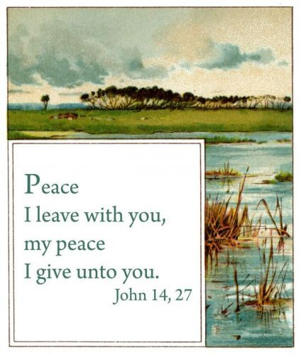 Inspirational Bible Quotations - Image 9