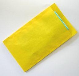 Ompak cadeauverpakkingen - kraft zakjes geel