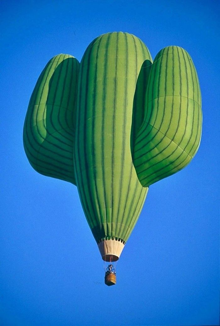 A Cactus Hot Air Balloon