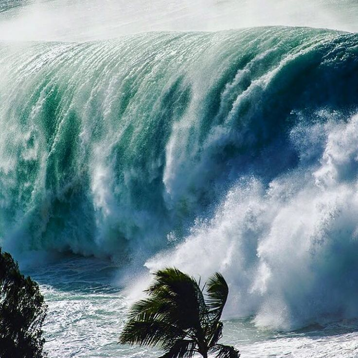 Waimea Bay… during the Eddie Aikau Photo Clark Little