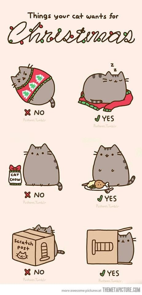 Illustrations & Posters / Cats | We Heart It
