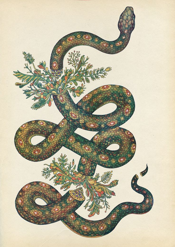 Snake Tattoo | Katie Scott I've seen this piece in an exhibition!