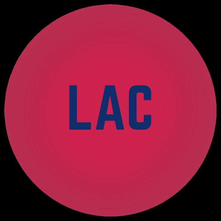 Los Angeles Clippers Team Profile
