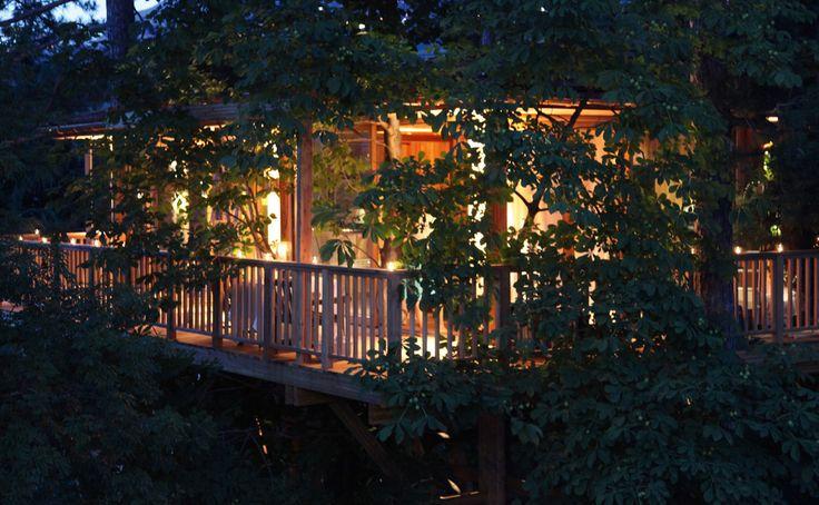 Meisters Hotel Irma a Merano: suite sull'albero, esclusiva