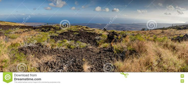 https://thumbs.dreamstime.com/z/landscape-bushes-grass-volcanic-soil-big-island-hawaii-usa-74222903.jpg