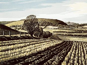 Winter Stubble, Winklebury Hill by Howard Phipps - Linocut