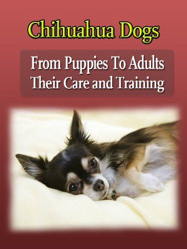 Chihuahua Dogs : From Puppies To Adults Their Care and Training (How to raise a happy, healthy, and well trained Chihuahua.)
