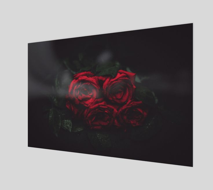 "Poster+""Roses""+by+Mixed+Imagery"