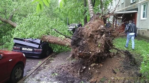 """""""По последним данным, в результате падения деревьев и конструкций погибли семь человек"""", - сказал источник.  По его словам, к врачам обратились 69 пострадавших, всем им оказывается медицинская помощь.     Следственный комитет, в свою очередь, пока подтвердил гибель шести человек. Об этом ТАСС"""