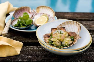 Scallops with herbs and ginger and garlic butter