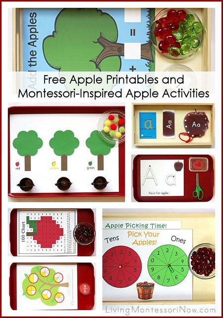 LOTS of free apple printables plus ideas for using free printables to prepare Montessori-inspired apple activities