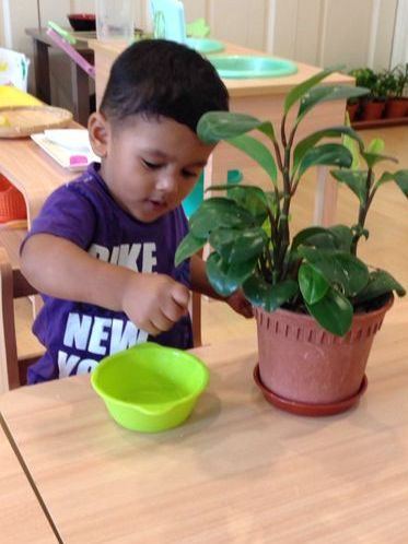 """""""The environment must be rich in motives which lend interest to activity and invite the child to conduct his own experiences."""" - Dr. Montessori"""