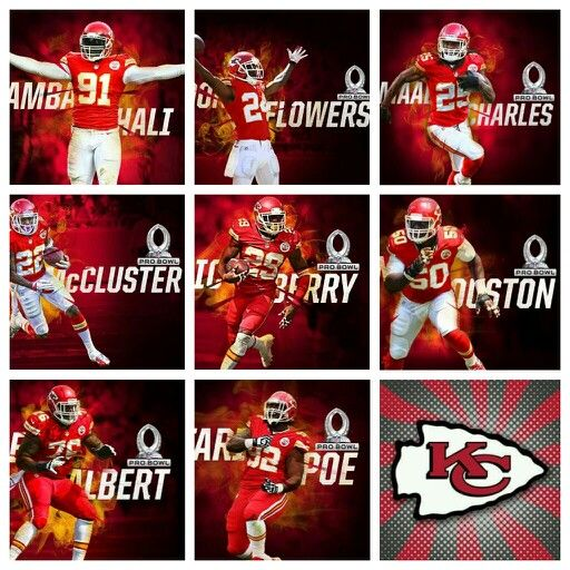 2014 Pro Bowl→Kansas City Chiefs!