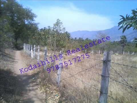 12 Acres Empty Agricultural Land for Sale Near Vathalakundu