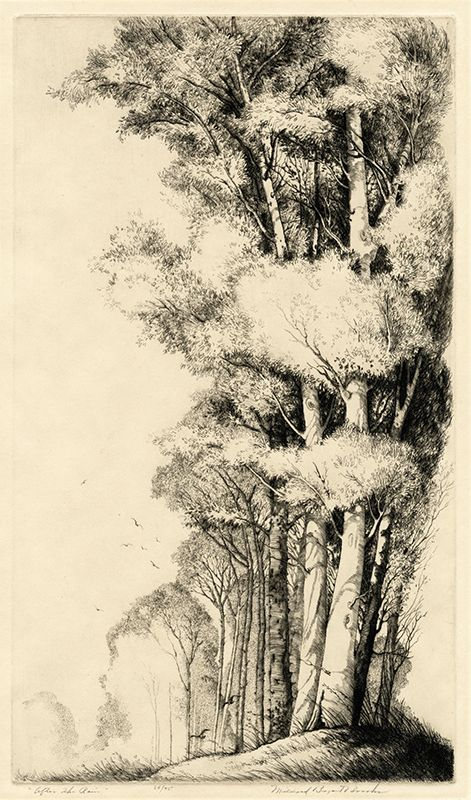 After The Rain by Mildred Bryant Brooks, etching