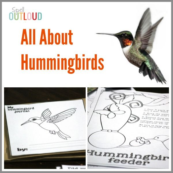 All About Hummingbirds activities-- especially geared toward younger children. Hummignbird coloring sheets, hummingbird nature journal, activities and more.