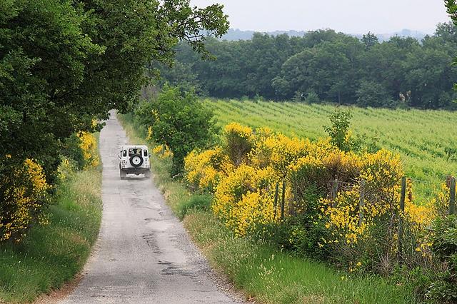 Back roads of Provence