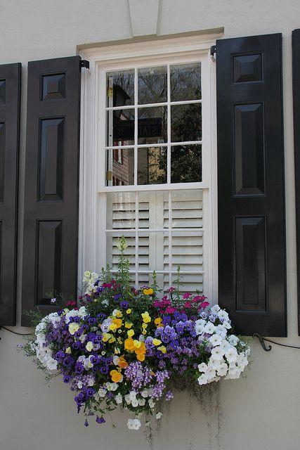 fehér színű ház színes virágokkal