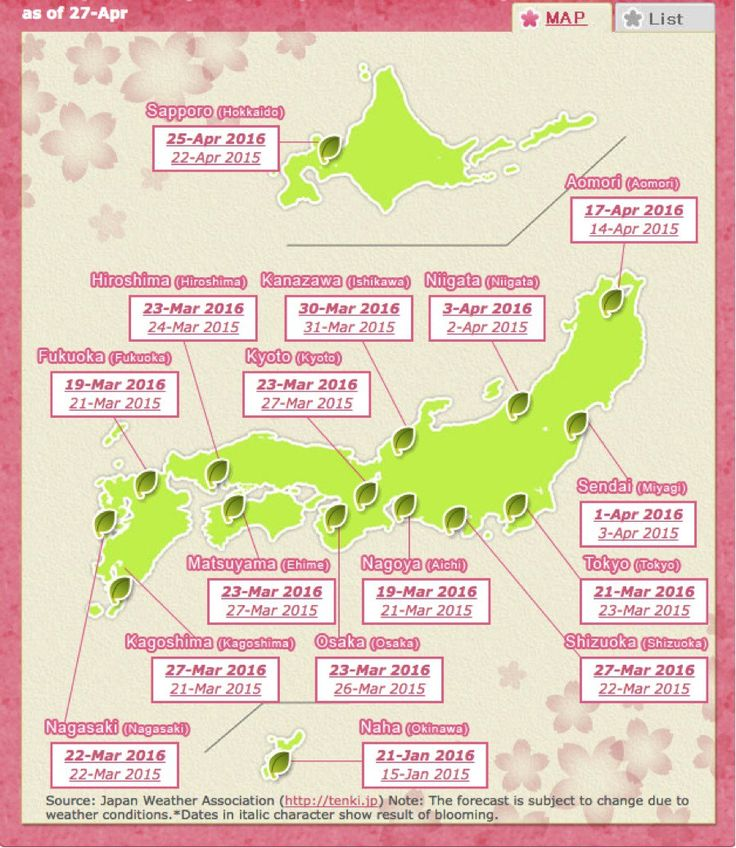 Cherry blossom Schedule Japan
