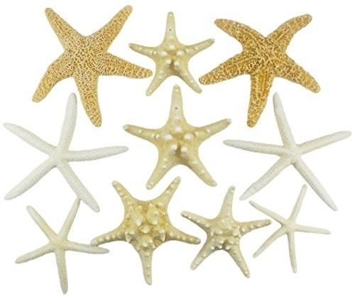 Decorate-Christmas-Trees-Nautical-Decor-U-S-Shell-Inc-Starfish-Mix-Home-New
