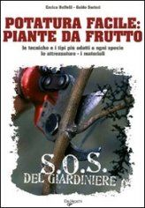 Potatura piante da frutto http://www.agricolturabiologicaonline.eu/?Potatura_piante_da_frutto