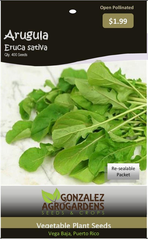 Arugula 'Eruca sativa' 400 Seeds