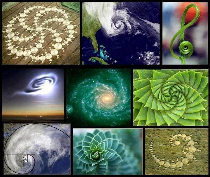 A MAGYARSÁG A MAG NÉPE: Barátom az örök Fibonacci - Az aranymetszés szabályai szerint