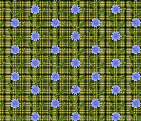 Chicory country flower fabric by mia_valdez on Spoonflower - custom fabric