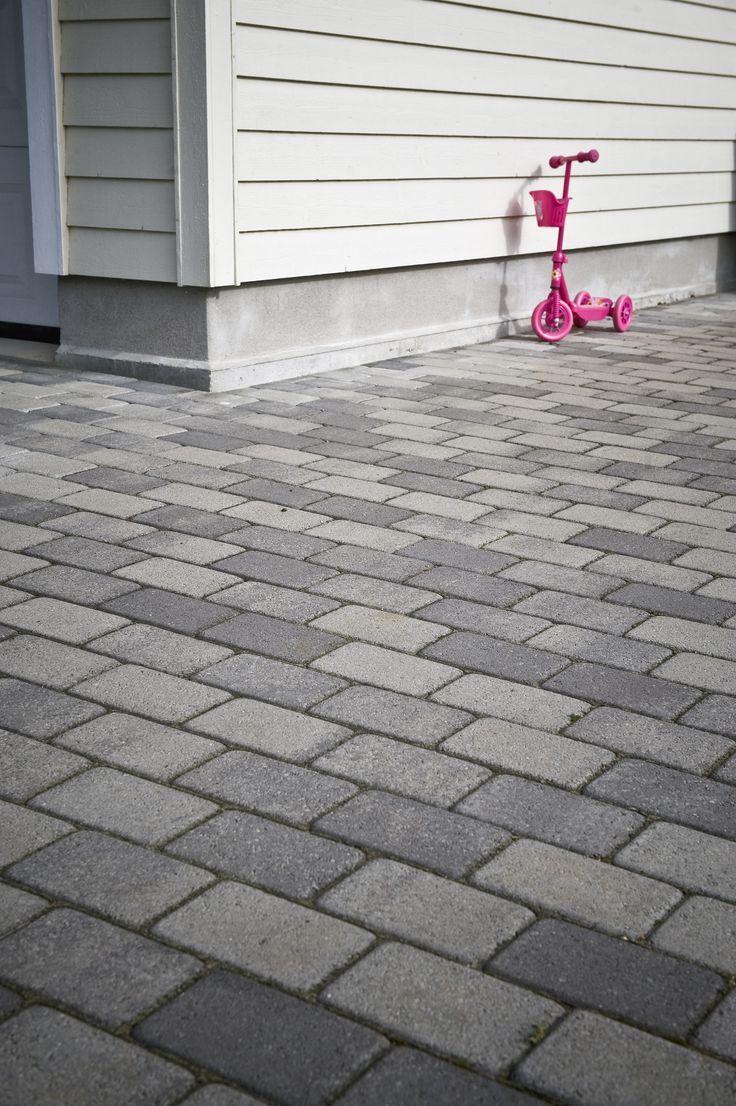 Kongsgård gråmix er spesielt gøy for dem med sparkesykkel!