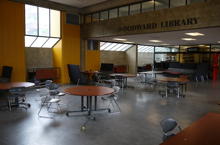 Woodward Library & Basement study area.  This location has all Science books and text books as well as some table space!