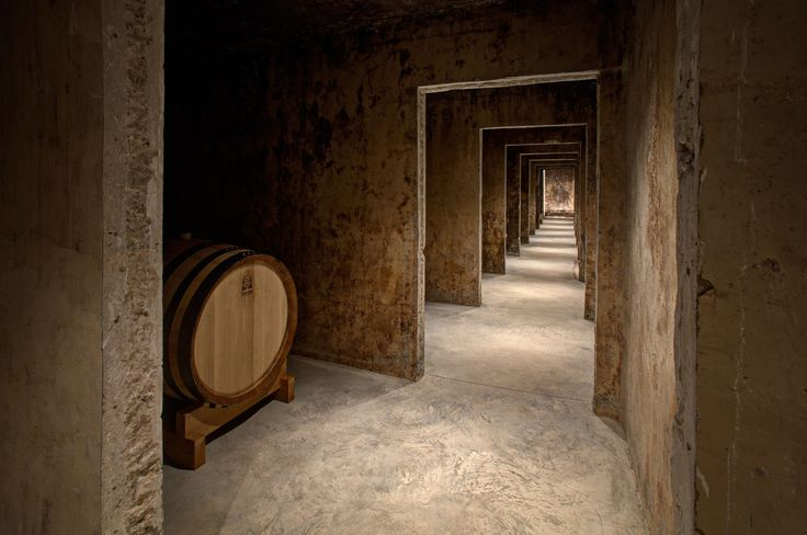Wines cellar MAGISTRA WINES , Guagnano (LE) | by Andrea Ingrosso
