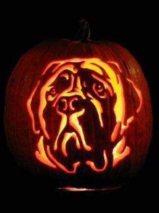 English mastiff pumpkin carving