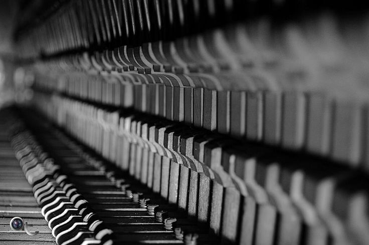 A #Line Of #keys #black_and_white #blackandwhite #dof #photography #andreaturno #nikontop #nikonphoto_ @andreaturno