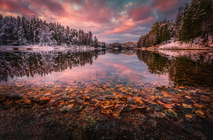 This photo is focus stacked from two 3 exposures HDR images. Taken in Ahvenisto, Hämeenlinna, Finland.