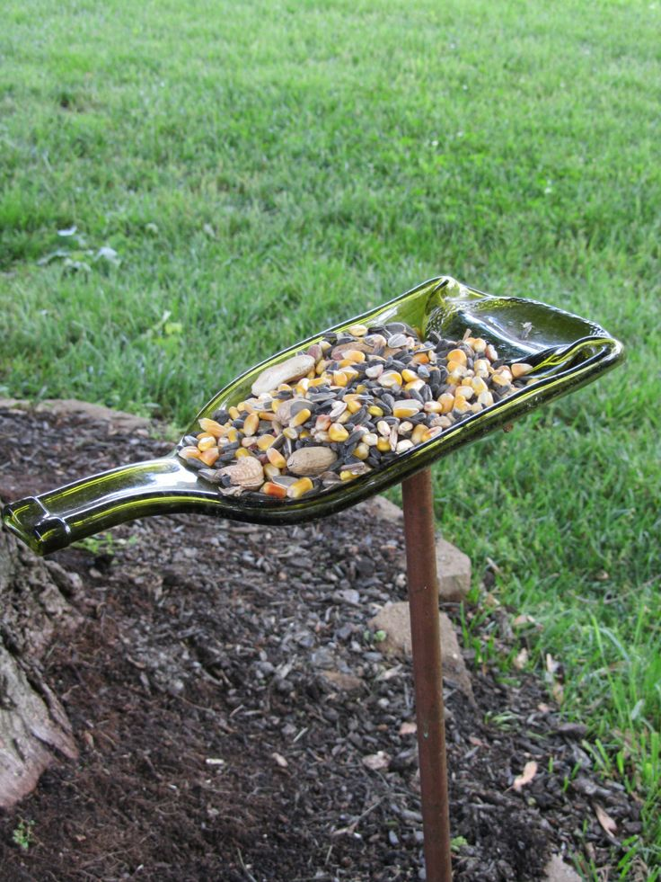 After you've drunk the wine, you can feed the birds!