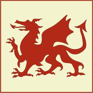 Welsh dragons were used to mark members of the Allegiance of Welsh Nationalists against French Rule, and later members of the New Welsh Army.