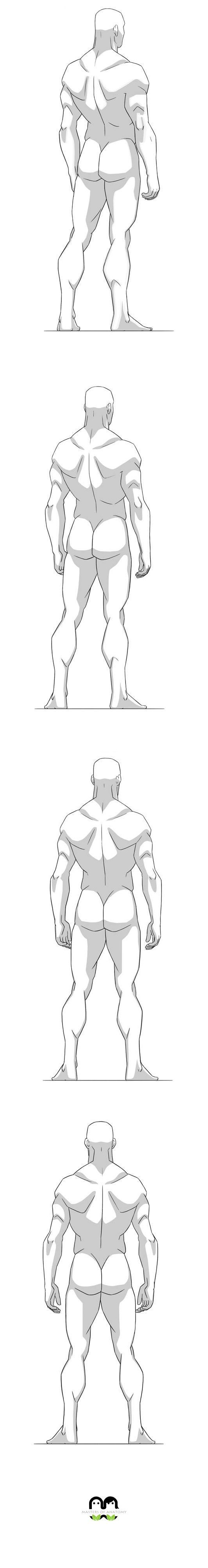 382 best Anatomy Tutorials and References images on Pinterest ...