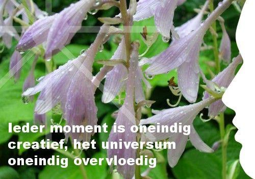 Mijn inspiratie: Ieder moment is oneindig creatief, het universum oneindig overvloedig
