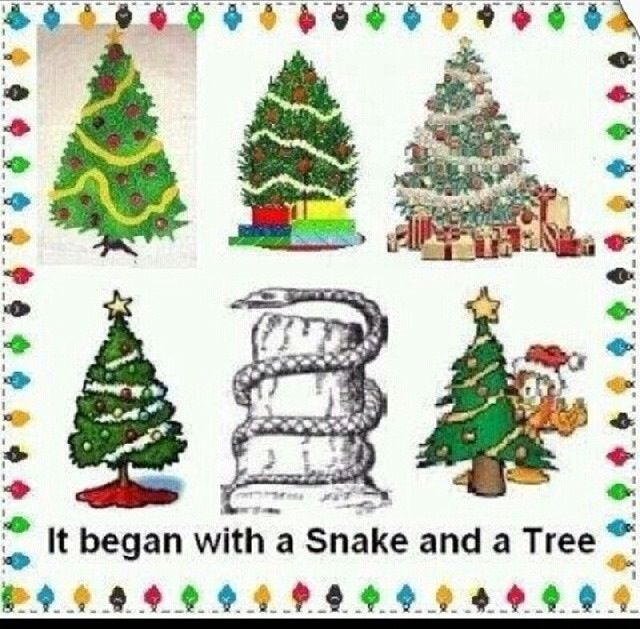 History Of The Christmas Tree Pagan: 172 Best Holiday Truth Images On Pinterest