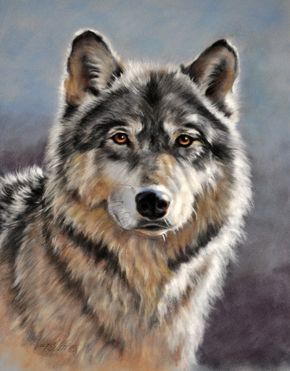 paintings of wolfs   Wolf Portrait   Wolf Portraits