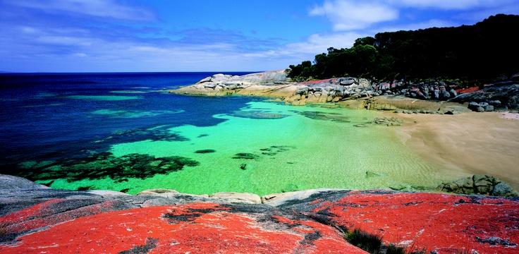A beach on Flinders Island.