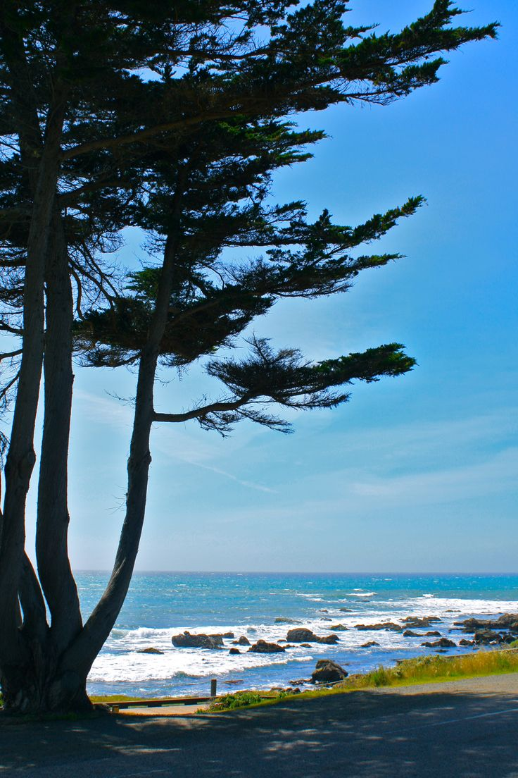 14 Best Images About Cambria On Pinterest Bottle Cas