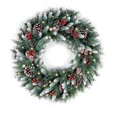 Found it at Wayfair - National Tree Co. Pre-Lit Frosted Berry Wreath