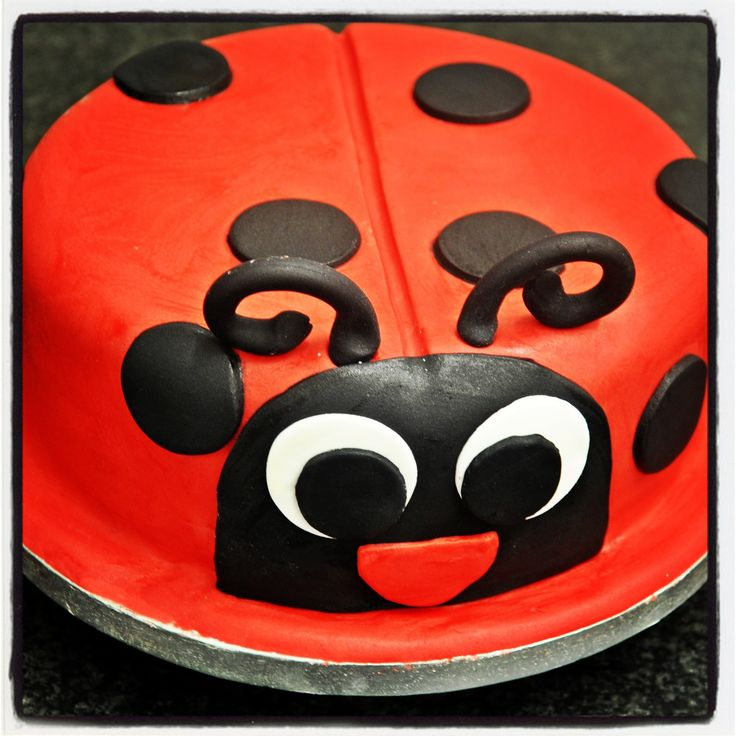 #Bespoke #ladybird #sugarcraft cake. Vibrant, colourful and lots of fun! #irishbaking #dublinbakery #dublincafe #birthdaycake
